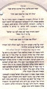 Sample Torah Installation Ceremony.  Click to enlarge.